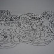 Roses anciennes en dessin